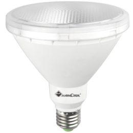 Lampadina Pro Par38 Led Evo 21074 risparmio energetico
