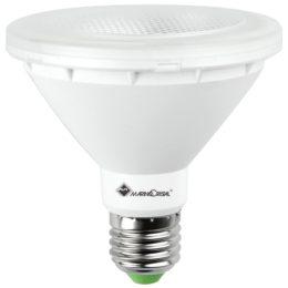 Lampadina Pro Par30 Led Evo 21107 risparmio energetico