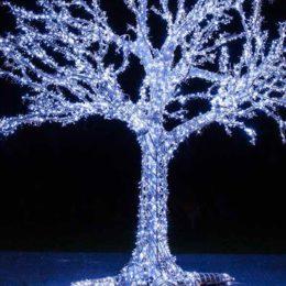 albero led grandezza naturale
